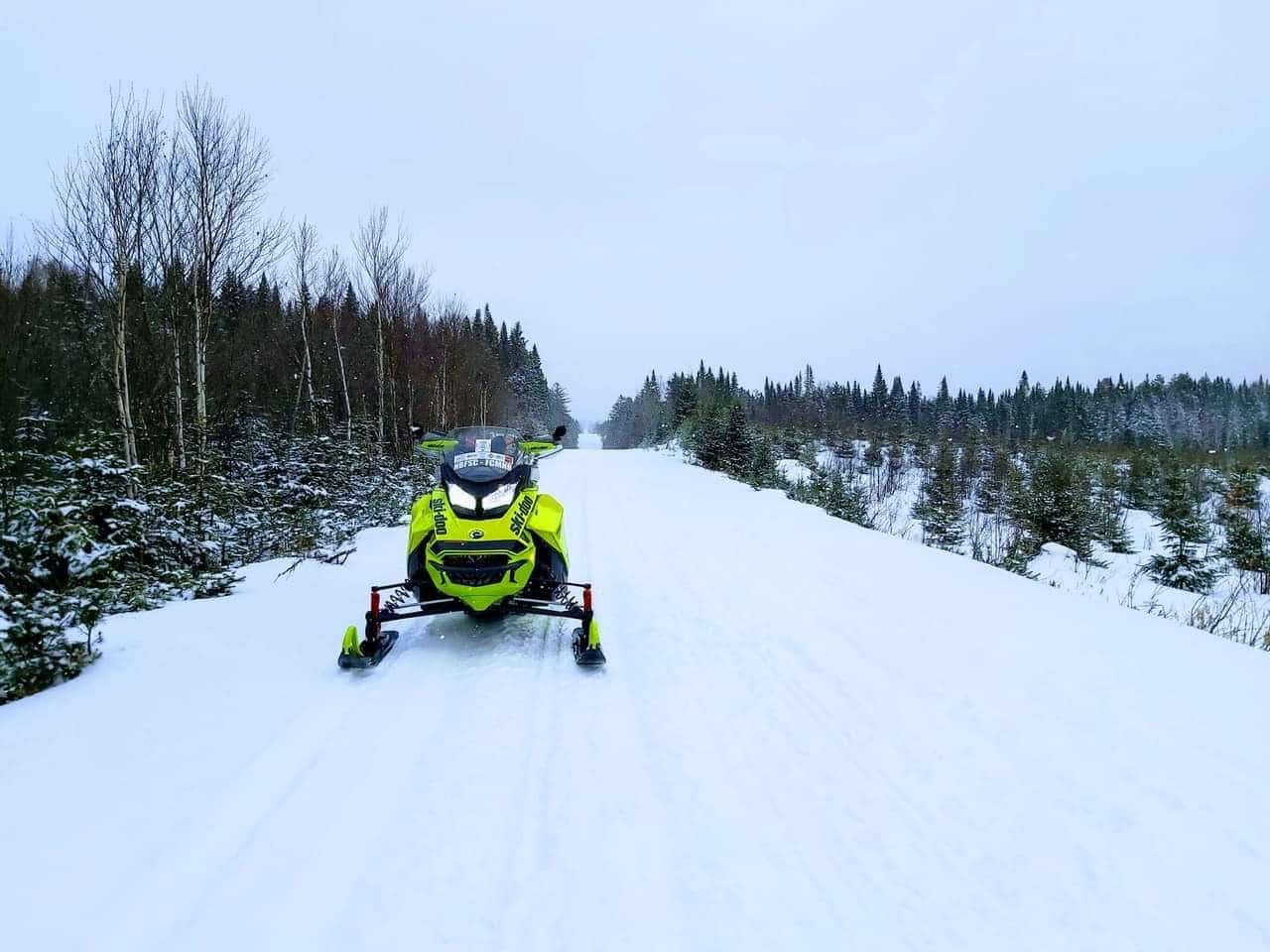 Sled in NB 2020