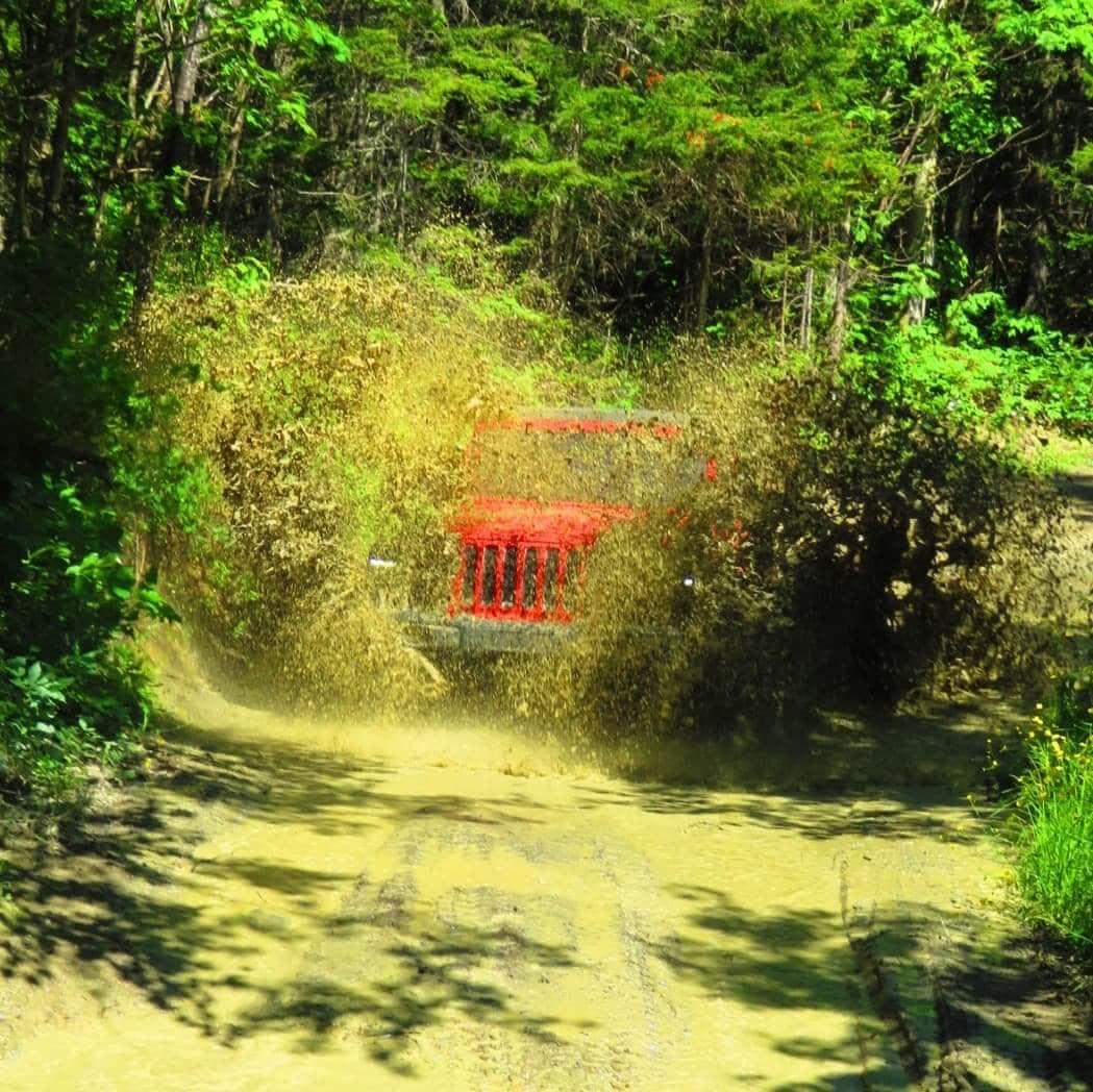 Jeeps hors-route