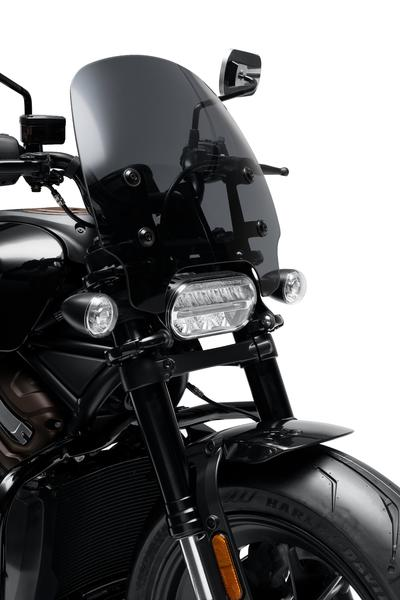 """The new """"Wild one"""" parts Collection. Photo: https://www.harley-davidson.com/ca/en/motorcycles/sportster-s.html"""