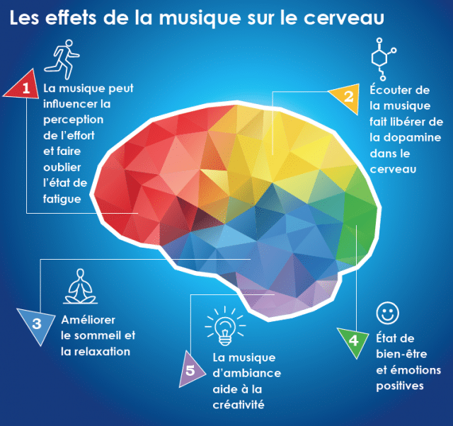 Les effets de la musique sur le cerveau. Source: https://www.polycliniquedeloreille.com/conseils-sante/musique-effets-cerveau