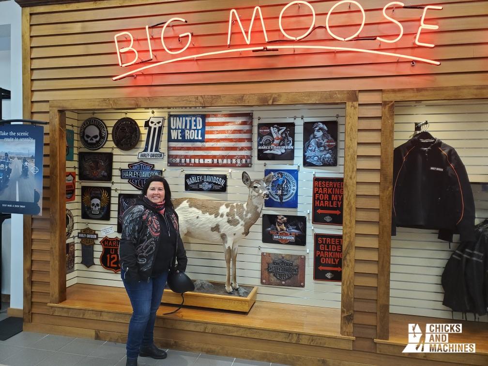 Le concessionnaire Harley-Davidson Big Moose : hors de l'ordinaire !